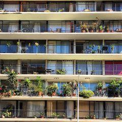 art architecture building windows facade