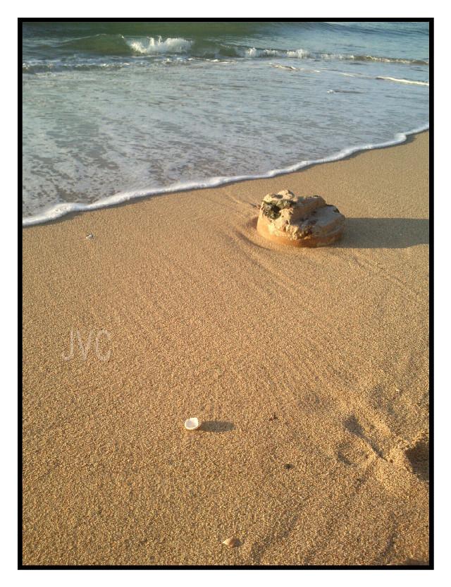 #sunrise #sea #water #sand #arena #amanecer #playa #beach #wave #ola