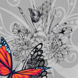 butterflies art allseeingeye flyhigh drawings
