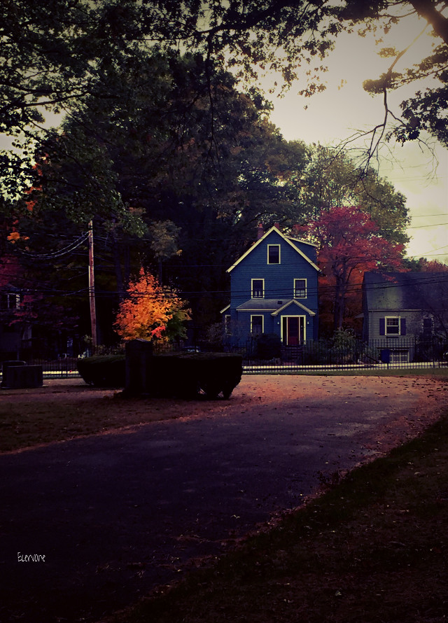""" neighborhood - lomoland hehe #lomoeffect #autumn #seasons #houses"