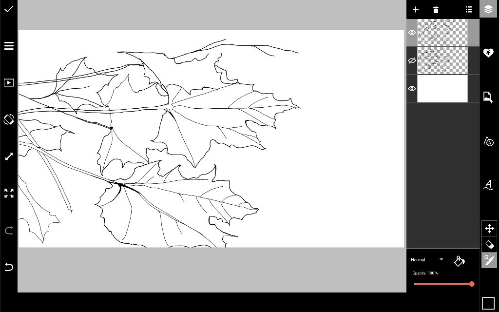 leaves drawing outline