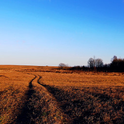 nature seasons freetoedit leadinglines dpcfields