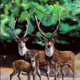 deers drawing digitalart nature animals