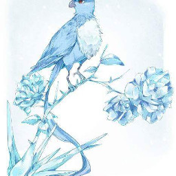 pokemon articuno arktos ice flower