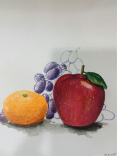 fruit fruits drawing illustration pencilart