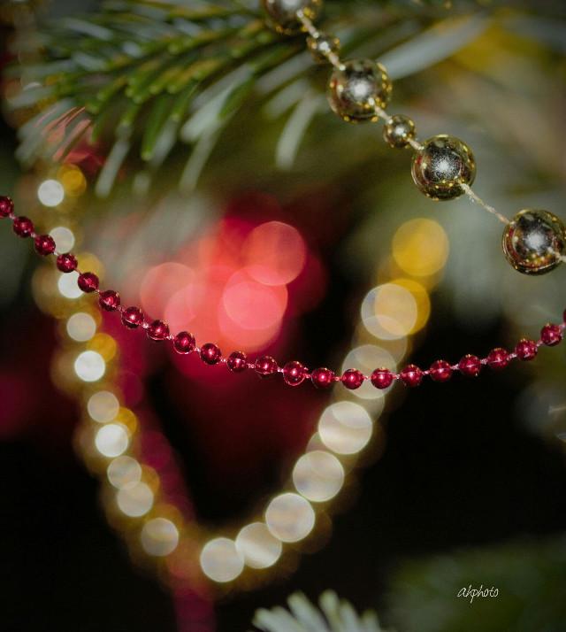 #twinkle  #photography