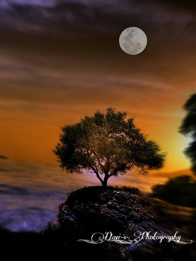 #illusion #landscape #surreal #nature  #cliffs  #sea  #seasons #photography  #sun  #sunset  #skylove  #moon  #tree  #skyshots  #dream #creation  #unreal  #art  #artistic  #beautifypicsart  #MyView  #mysterious  #mysanctuary   #unbelievable ~no words ~
