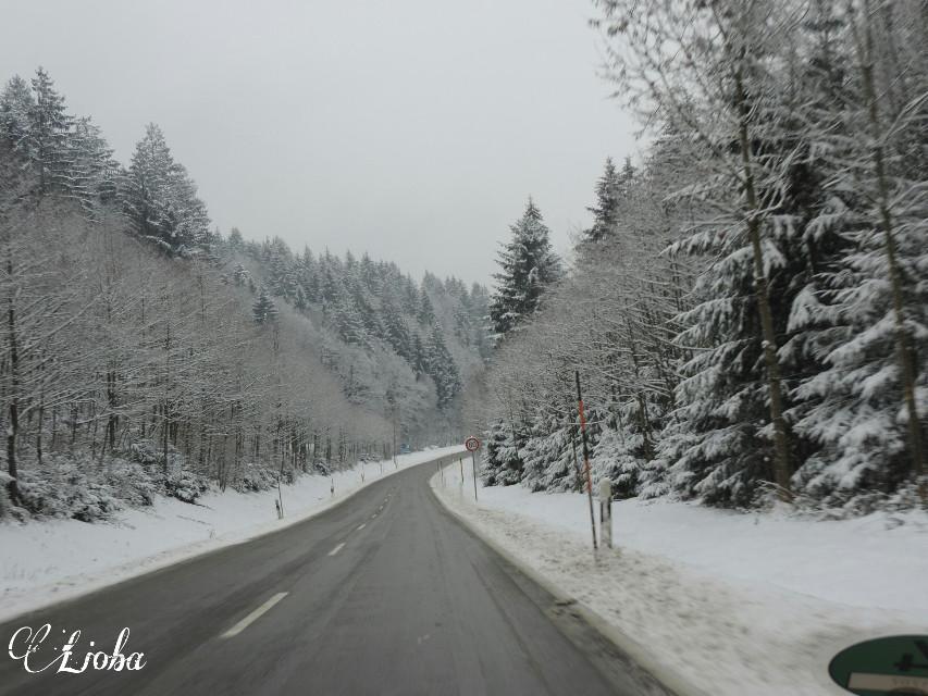 #nature #photography #winter #snow #Bayerische Wald #Deutschland