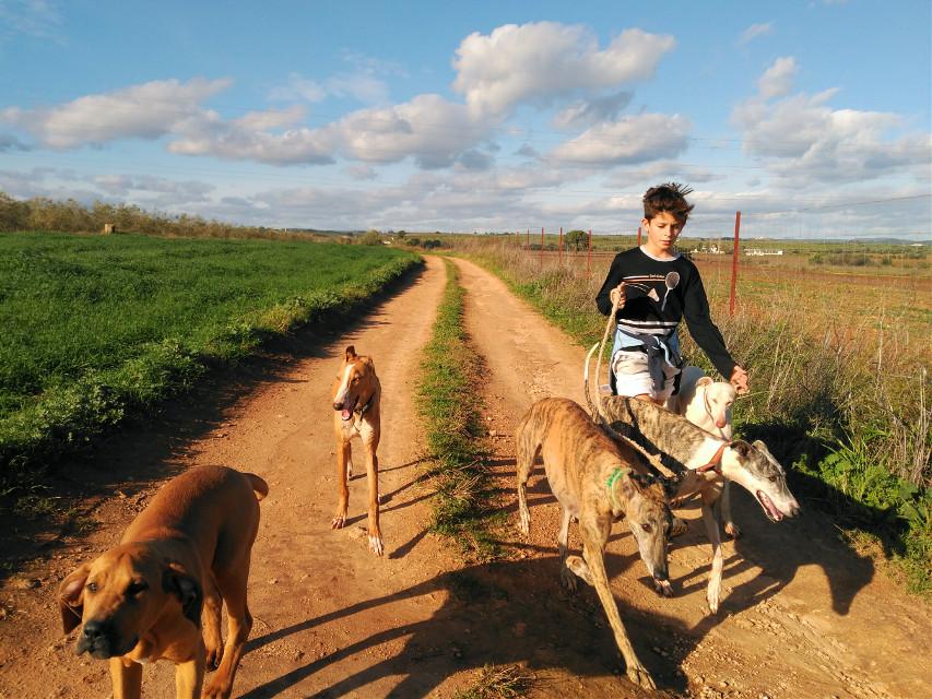 #nature #petsandanimals #emotions #people #photography #love #galgo #dog