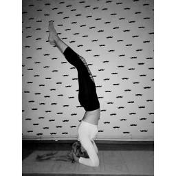 yoga yogalove yogagirls