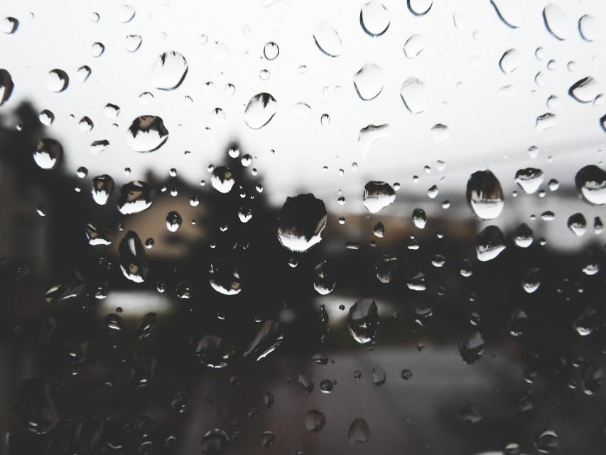 ☁☁  #FreeToEdit #nature #rain #rainyday #photography #wppwaterdrops