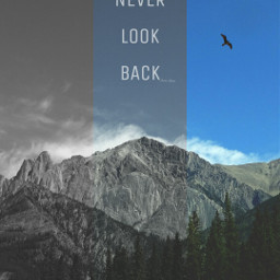 never look back designs free