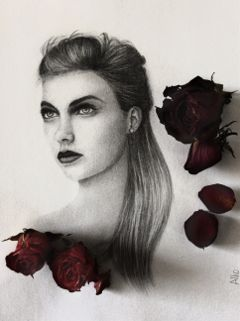 drawing art fashion pencilart roses