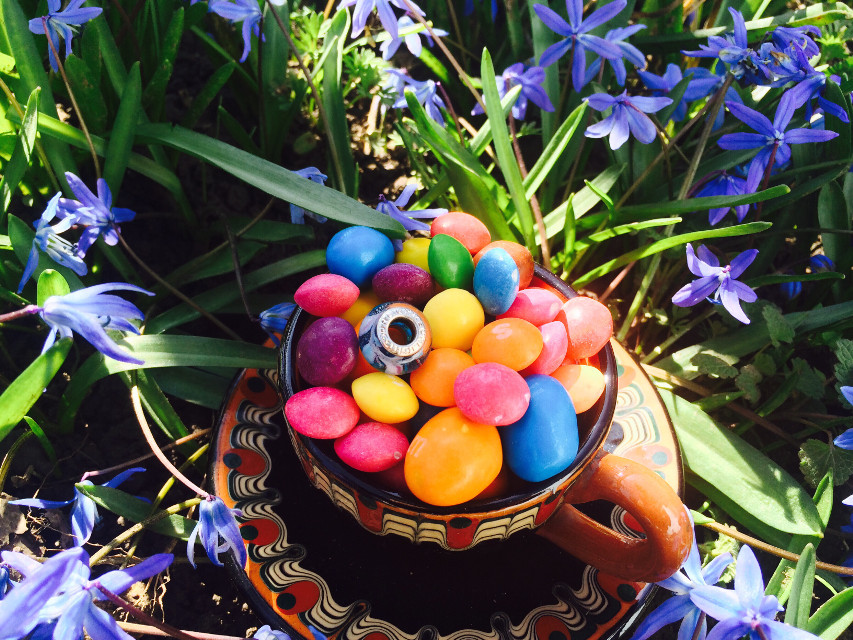 #photography #interesting #nature #flowers #myphoto #myphotography #candies #sunligt