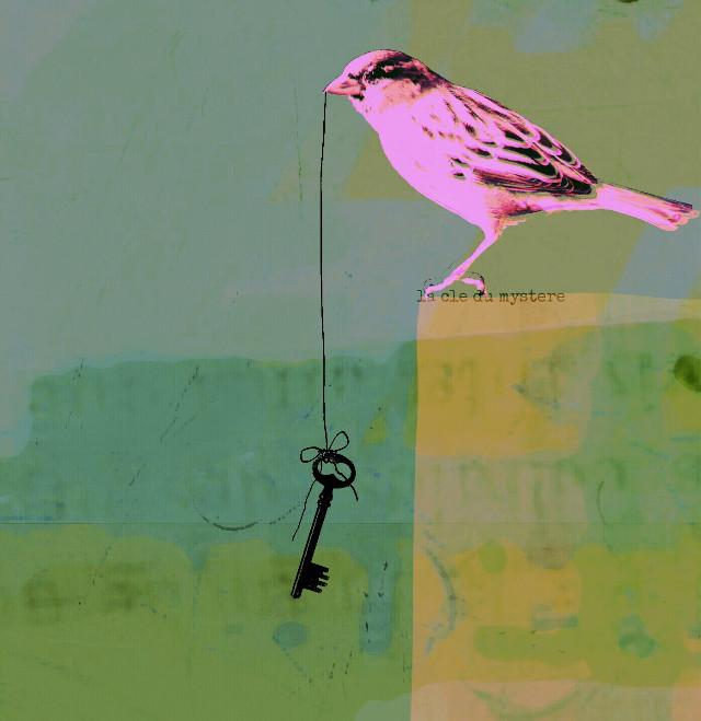 La cle du mystere #birds #clipart