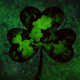 stpatricksday clover bokeh selectioncrop green