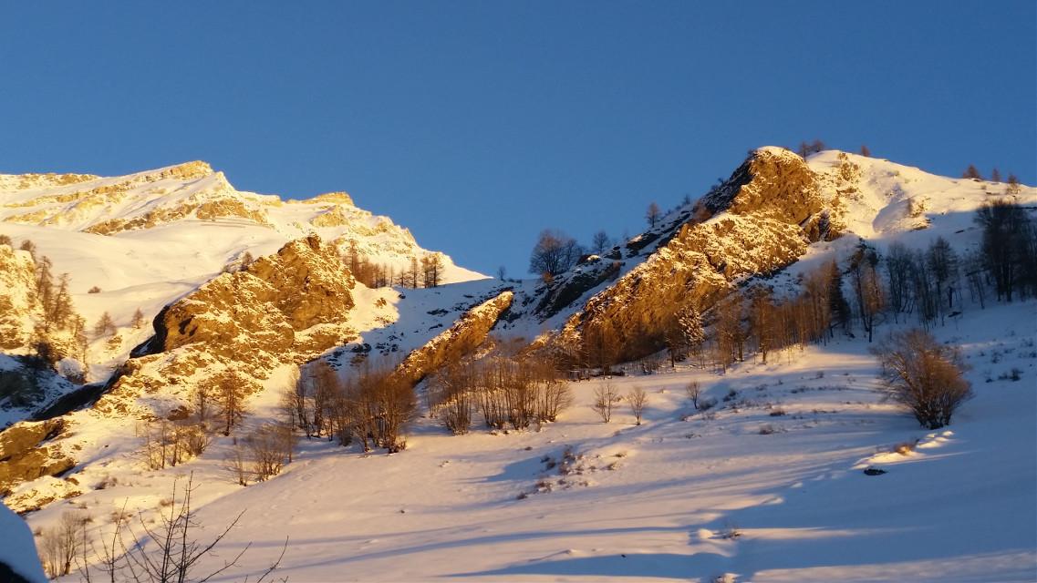 #snow   # sunny  #gold  #winter #enjoy