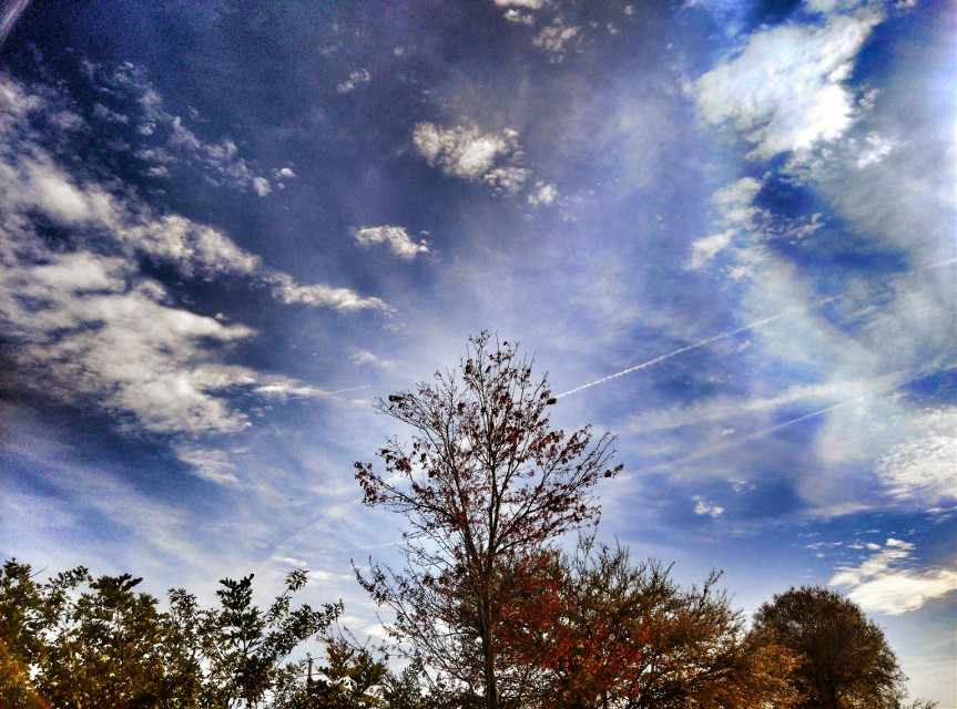 03/18/2016... 10:17am... Spraying heavily again & the effects of... Picture taken & edited by Shawn Lee Honaker...