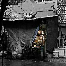 oldphoto freetoedit hdr colorsplash blackandwhite