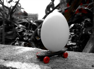 freetoedit happyeaster egg easteregg colorsplash