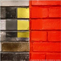 myedit belgium stoptheviolence