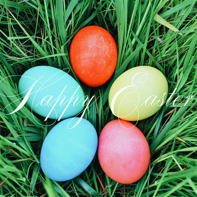 #baby #colorful #colorsplash #cute #edited #spring #photography #nature #edited #eggs #eastereggs #happyeaster #Easter