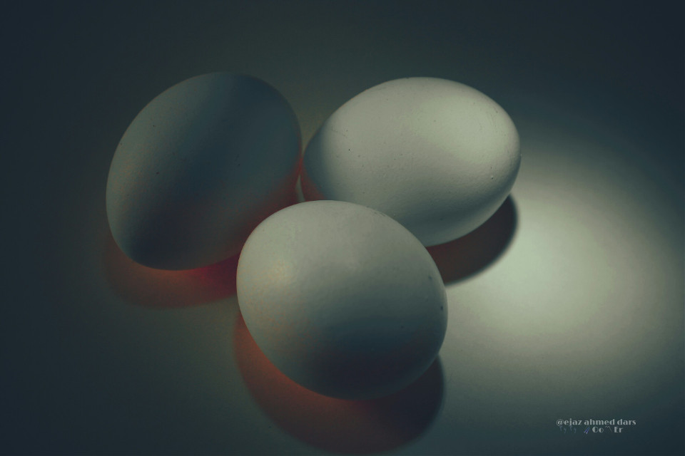 #photography #softcolors  #eggs