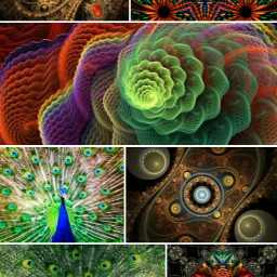 fractals related previous colorful photography