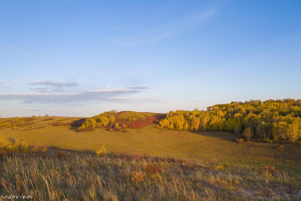 #nature #grassland #autumn