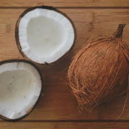 coconut wood interesting tropical photography freetoedit