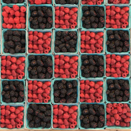 freetoedit food checkers red black