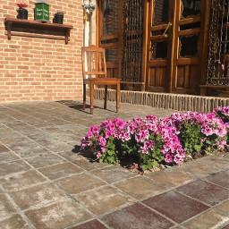 iran isfahan coffeeshop