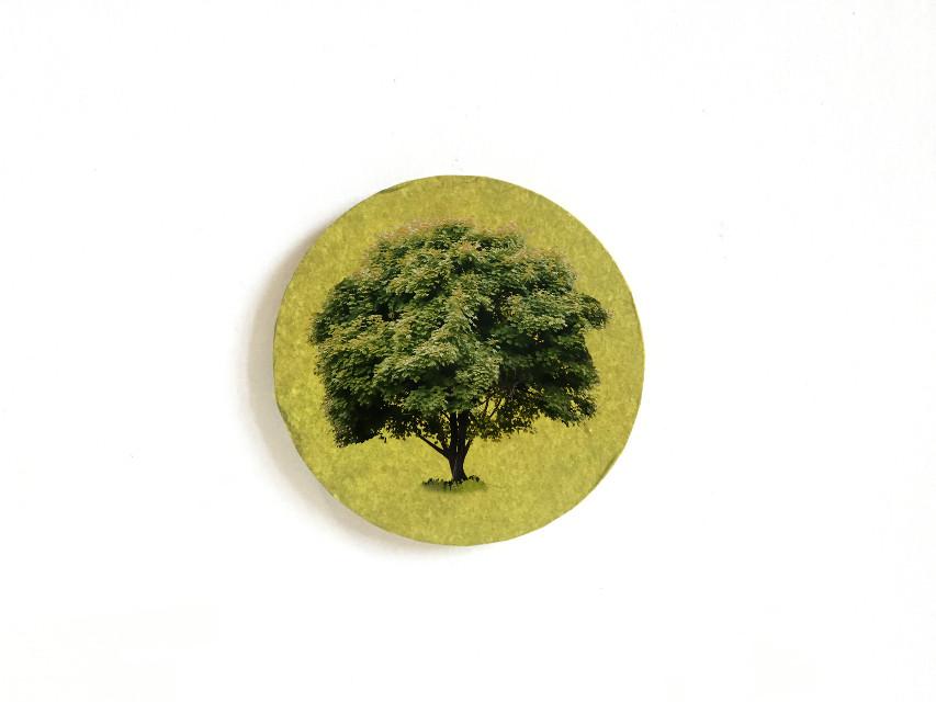 #earthday #art #picture #tree #greenday #lifestyle #fashion        #FreeToEdit