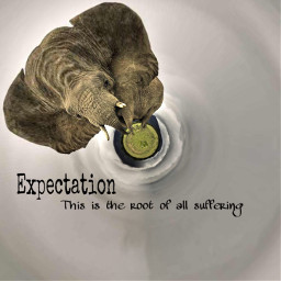 shakespeare elephant quotes circular