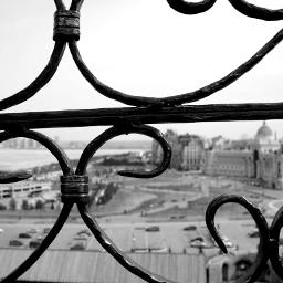 travel photography blackandwhite macro