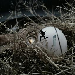 surrealistgate fisheye edited egg man