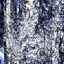 art artistic abstract blue branches