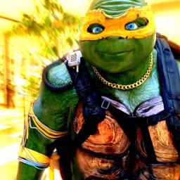 ninjaturtles interesting cinema